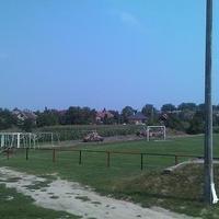 Zöldhírek: Kivágták a fát a focipályán