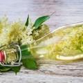 Mezei gyógynövények
