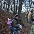 Karácsony után a Visegrádi-hegységben