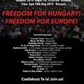 Tüntetés Brüsszelben - Interjú a szervezőkkel
