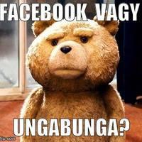 Te a párodat vagy a Facebookot nyomod inkább?