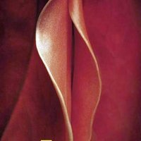 Válogatott erotikus reklámok a jobbak közül! 2. rész!
