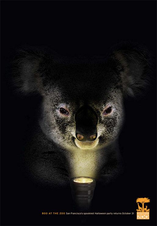 halloween_koala.jpg
