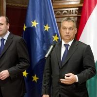 A De Volkskrant című holland lapban, Manfred Weber, az Európai Néppárt frakcióvezetője