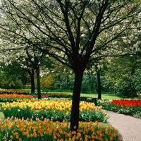 Varázslatos parkok városokban...