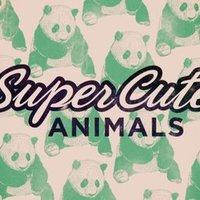 Szupercuki állatok