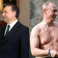 Donna hol vagy??                                                                                           Képzeld Orbán szexibb, mint Putyin:(