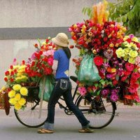 Virág - mindenkinek! :)