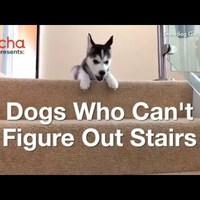 A lépcsőn :-D