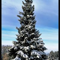 Odakint havas táj, idebent békesség......