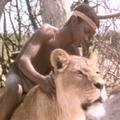 Sirga, az oroszlán