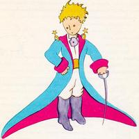 Kis Herceg és a programozó