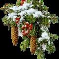 A pót-télapó + Udvarlót karácsonyra