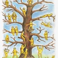 Ki vagy és ki szeretnél lenni? :-))) Helyed a fán...