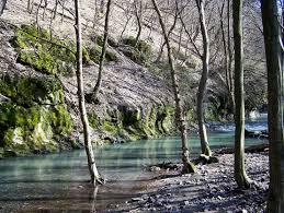 A Kemence-patak völgye - Börzsöny