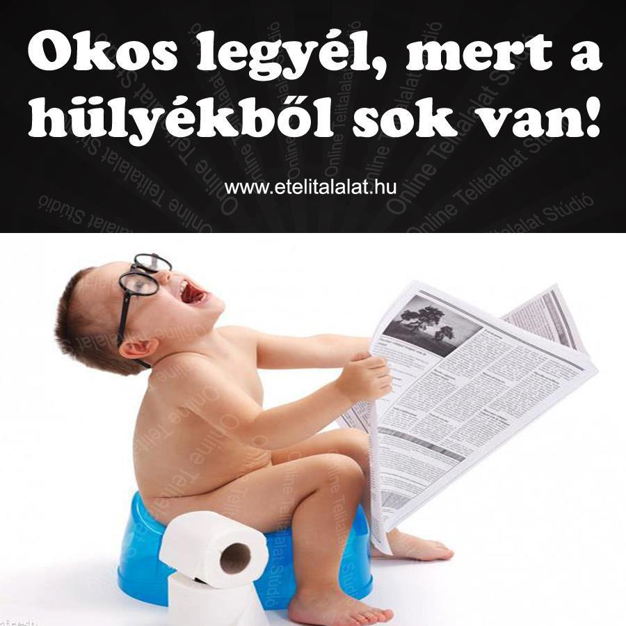 www.tvn.hu_00cd2c4c33b269c8ff5141c409af45d1.jpg