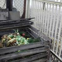 Komposztálási háziverseny