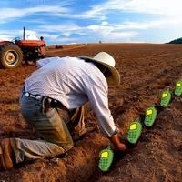 Unortodox magyar agrárium