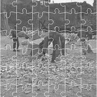 Széll Kálmán puzzle