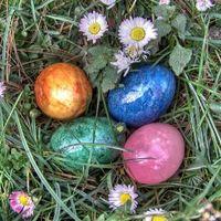 Nyuszis mesék húsvétra - A titokzatos tojásfestő