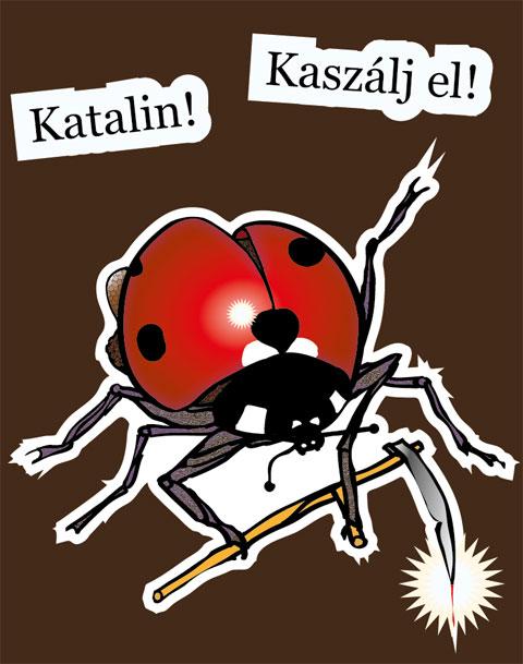 Katalin, Kaszálj el!