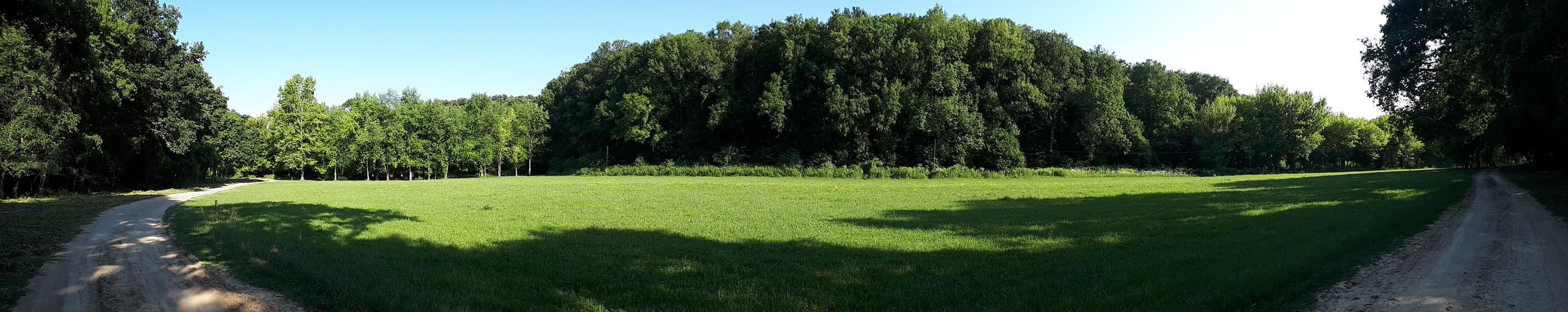 Gyerektábor előtti mező