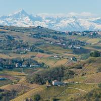 Borozgatások Piemontban