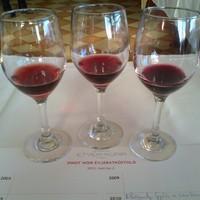 Etyeki Kúria: Pinot noir évtized