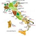 Az olasz régiók jellegzetes tésztái