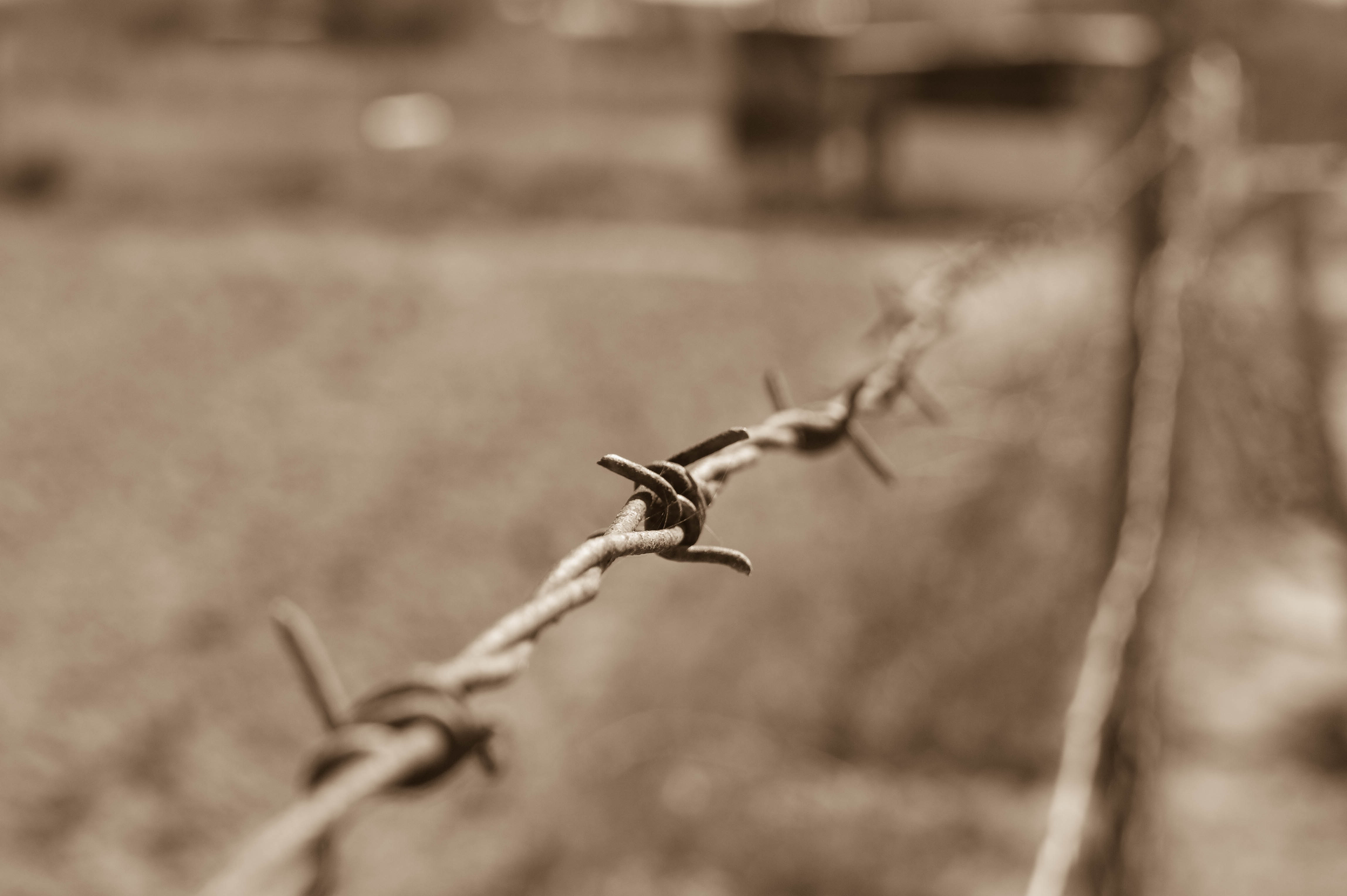 close-up-of-wire-against-blurred-background-237812.jpg