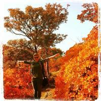 Zabothegyező - Fall time, cozy time BookTag