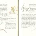 A kis herceg 30-31. oldal