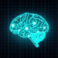 Omega 3 az agy fejlődéséért