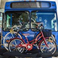 Tényleg utálják az autóbuszvezetők a kerékpárosokat?