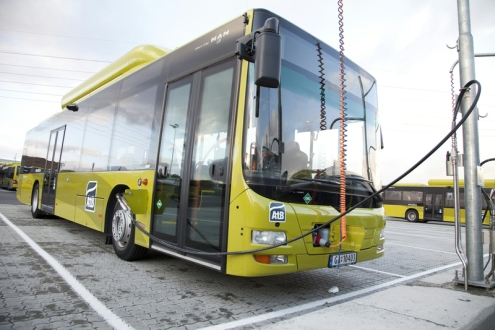 P_Bus_EOT_LionsCity_CNG_20.jpg