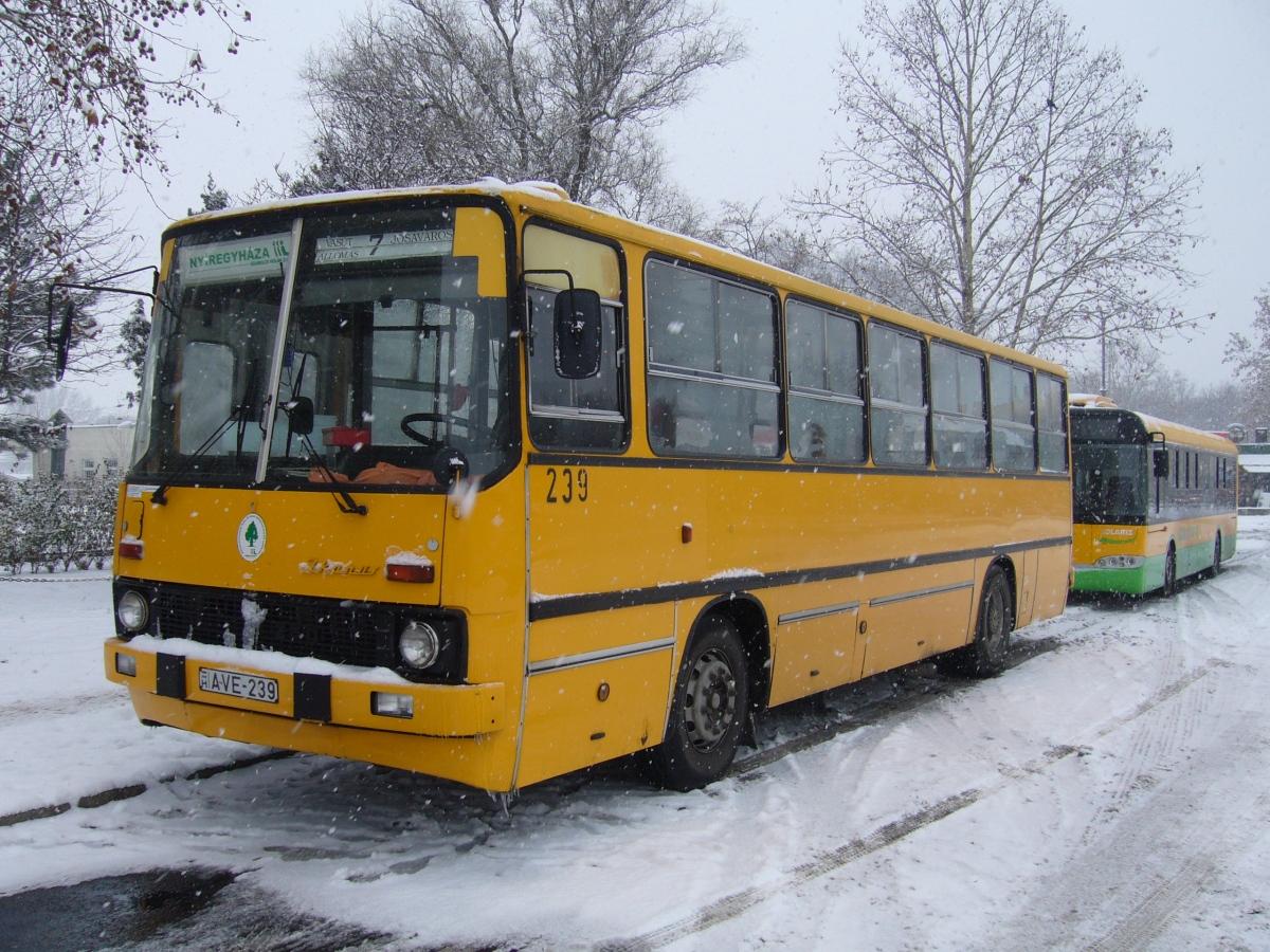 AVE-239, Ikarus 260.06