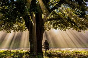 A gyász és a spiritualitás