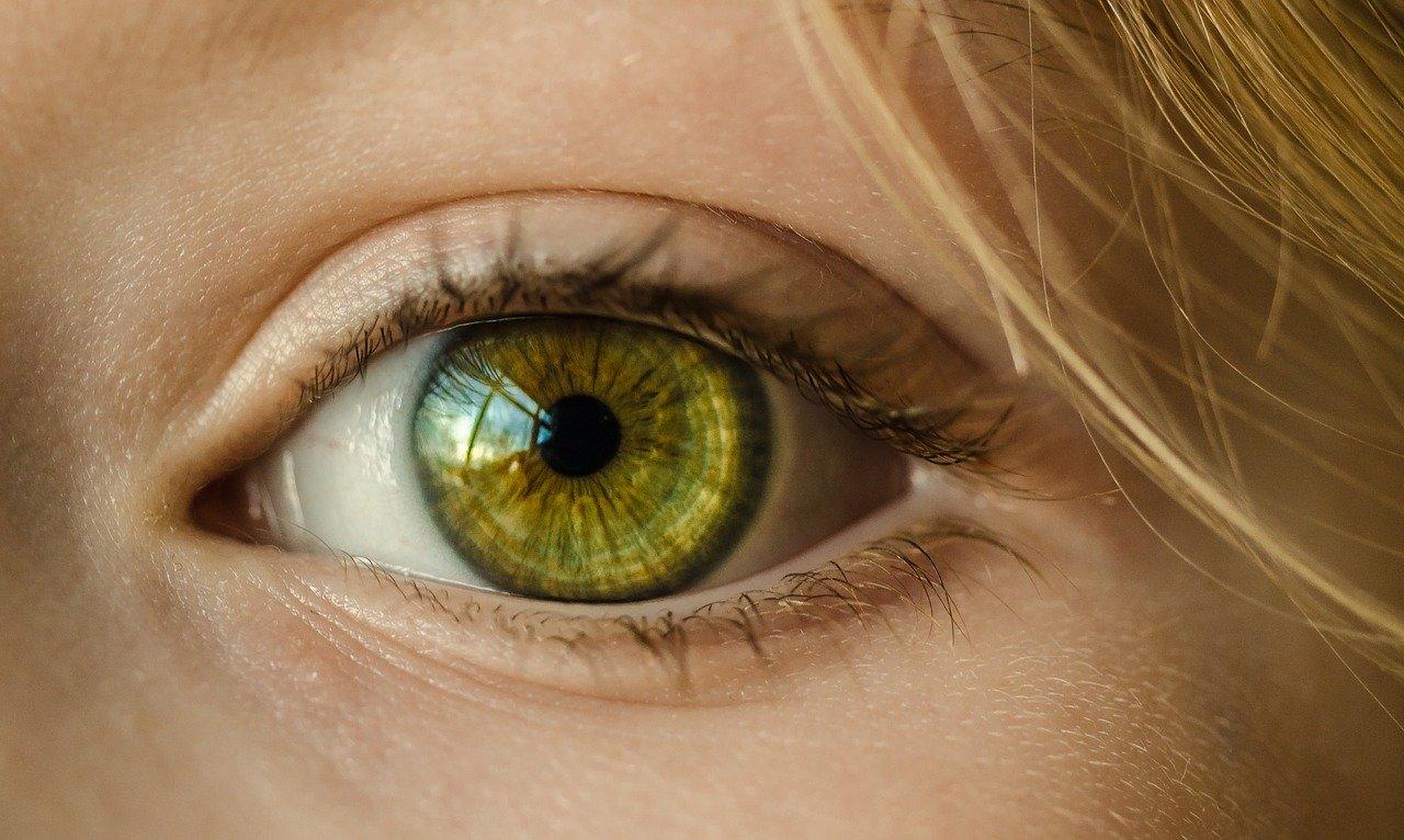 eye-1132531_1280.jpg