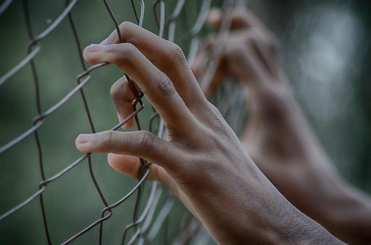 fence-2163951_1280.jpg