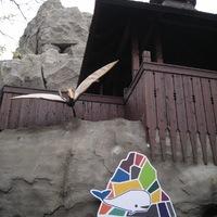 Heti Muníció: Varázshegy az Állatkertben
