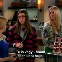 Film online ingyen letöltés nélkül azonnal nézhető: Agymenők The Big Bang Theory 4. évad 22. rész (The Wildebeest Implementation) magyarul