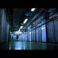 Film online ingyen letöltés nélkül azonnal nézhető: A kísérlet