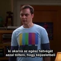 Film online ingyen letöltés nélkül azonnal nézhető: Agymenők The Big Bang Theory 5. évad 19. rész (The Weekend Vortex) magyarul