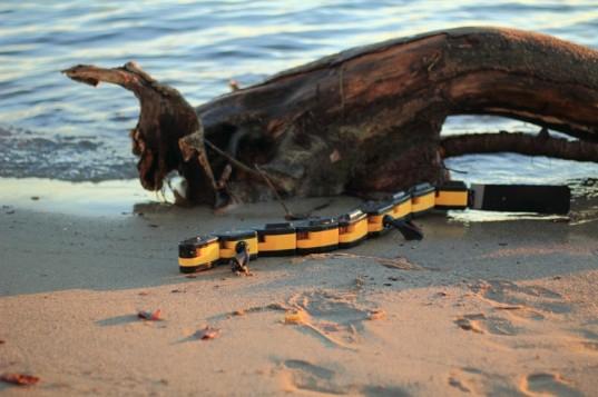 szalamandra-robot.jpg