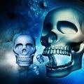 A halál fázisai