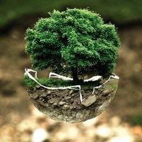 Marketing és környezetvédelem - valamit tenni kell