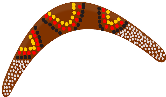 boomerang-151561_640.png