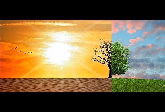 climate-change-2063240_640_flip.jpg