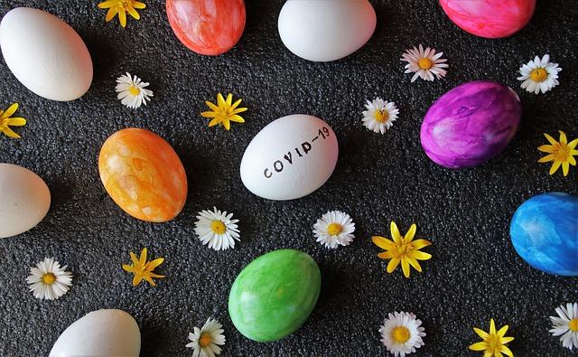 eggs-4991809_640.jpg