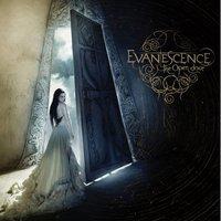 Evanescence - The Open Door (2006)